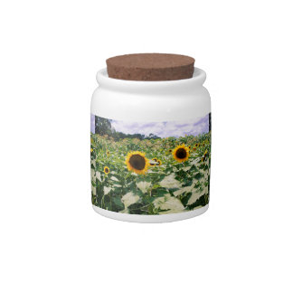 Sunflower Maze Candy Jars