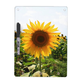 Sunflower Memo Board with key hooks