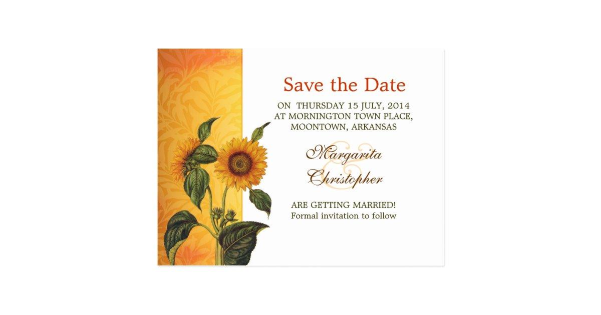 sunflower modern custom save the date postcards zazzle