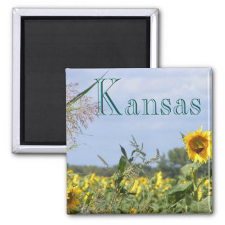 Sunflower Monarch 2 Inch Square Magnet
