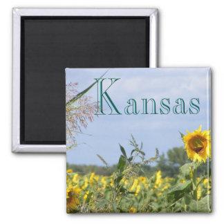 Sunflower Monarch Fridge Magnets