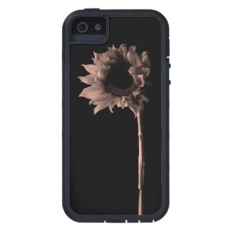 Sunflower - Monochrome Fine Art Photograph iPhone SE/5/5s Case
