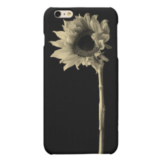 Sunflower - Monochrome Fine Art Photograph Matte iPhone 6 Plus Case