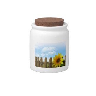 Sunflower Nature Beauty Candy Jar
