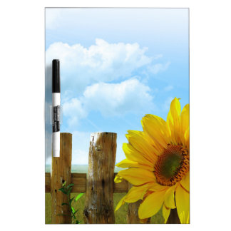 Sunflower Nature Beauty Dry-Erase Board
