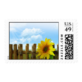 Sunflower Nature Beauty Stamp