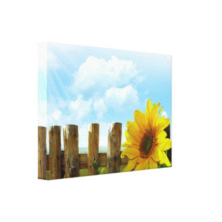 Sunflower Nature Beauty Stretched Canvas Print
