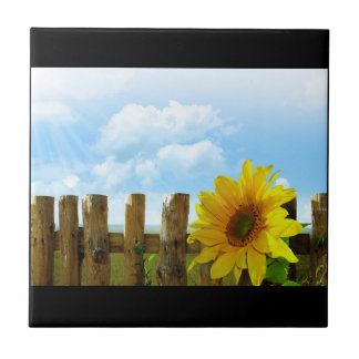 Sunflower Nature Beauty Tiles