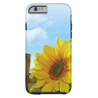 Sunflower Nature Beauty Tough iPhone 6 Case
