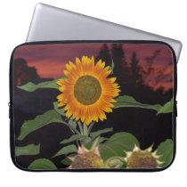 "Sunflower Neoprene Laptop Sleeve 15"""