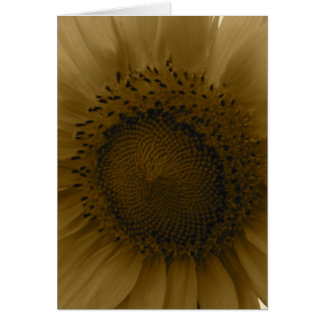 Sunflower Notecard Greeting Card