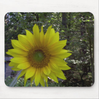 Sunflower, Old Orchard Beach, Maine Mouse Pad