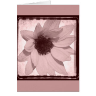 sunflower oldstyle card