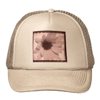 sunflower oldstyle hats