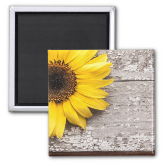 Sunflower on a Wooden Table Magnet