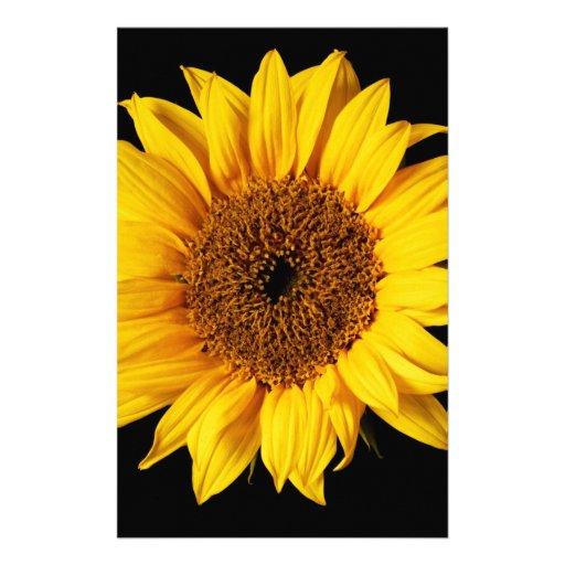 Sunflower on Black Background Stationery Design