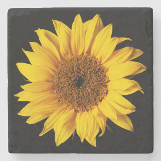 Sunflower on Black Sun Flower Floral Template Stone Coaster