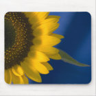 Sunflower on Blue Mouse Pad