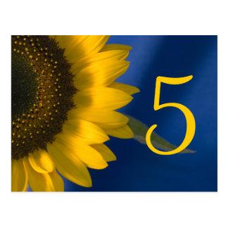 Sunflower on Blue Table Number Postcard