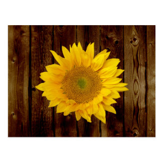 Sunflower on Vintage Barn Wood Country Postcards