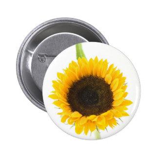 Sunflower On White Background Button
