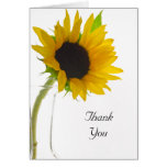Sunflower on White Thank You Greeting Card
