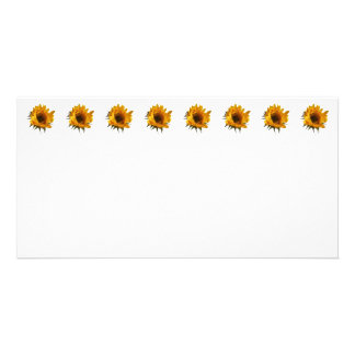Sunflower Opening Photo Cards