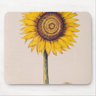 Sunflower or Helianthus Mouse Pads