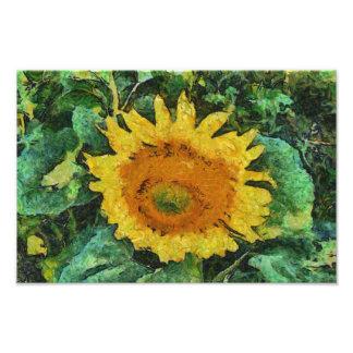 Sunflower painting photo art