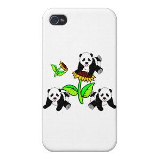 Sunflower Panda Bears Cases For iPhone 4