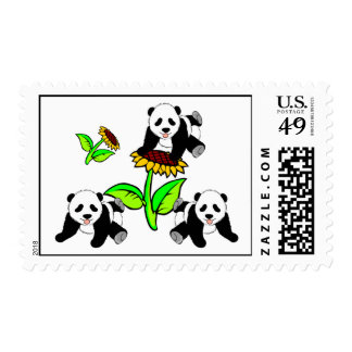 Sunflower Panda Bears Postage