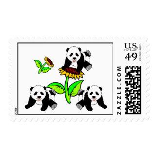 Sunflower Panda Bears Postage Stamp