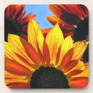 Sunflower Petals Drink Coasters