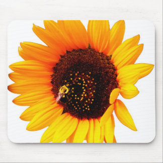 Sunflower Photo Mouse Pads
