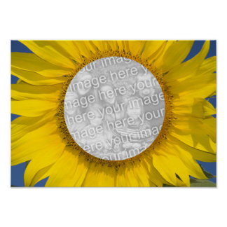 Sunflower Photo Poster Print