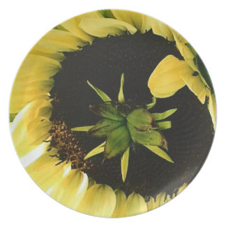 Sunflower Picture Plate