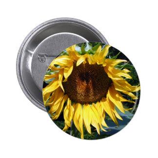 Sunflower Pinback Button