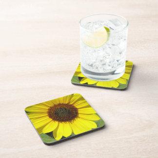 Sunflower Plant Cork Coasters