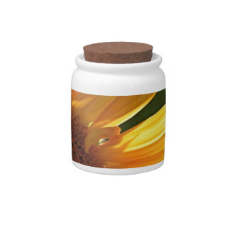 Sunflower Power! Candy Jars