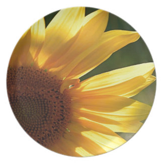 Sunflower Power! Dinner Plate