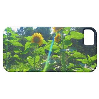 Sunflower Power iPhone SE/5/5s Case