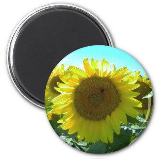 Sunflower Power-Magnet 2 Inch Round Magnet