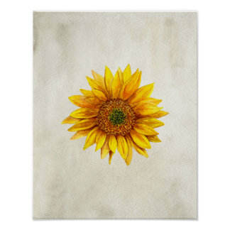 Sunflower print. Rustic wall art. Country flower Poster