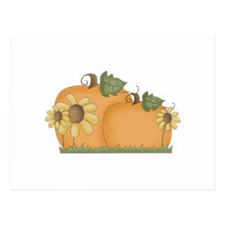 sunflower pumpkins postcards