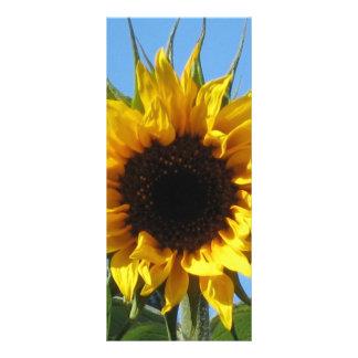 Sunflower Rack Card 4'' x 9''