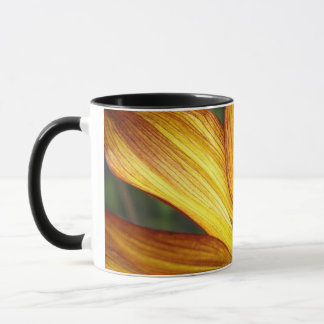Sunflower REALLY close up Mug