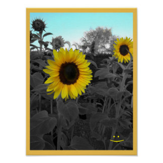 Sunflower Recolor Smiley Poster