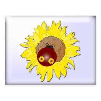 Sunflower Reflection Ladybug Postcard