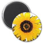 sunflower refrigerator magnet