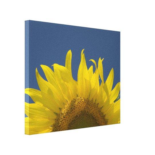 Sunflower Rising Canvas Print